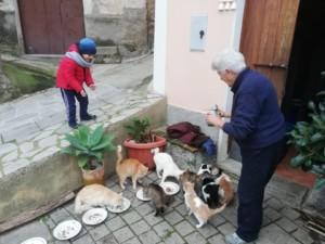 Comunità del borgo di Badolato, human destination